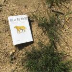 ケンリュウ【紙の動物園】~世界のSF文学賞初の三冠